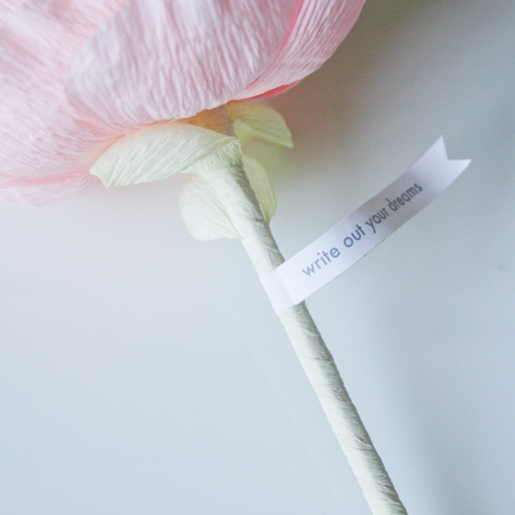 PaperPeonyDetail