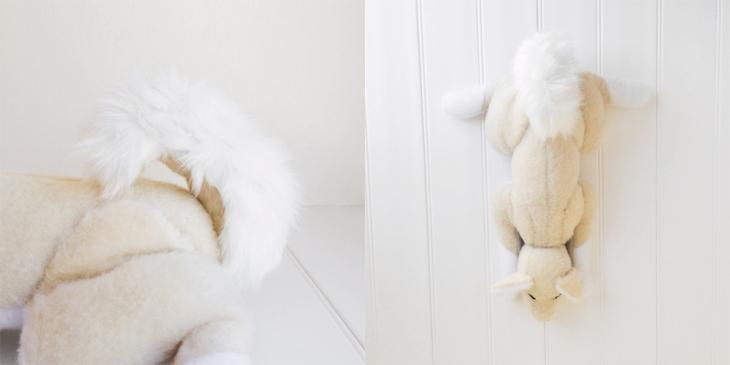 Momo the Shiba Inu Dog