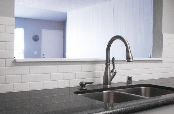 Kitchen_Sink2